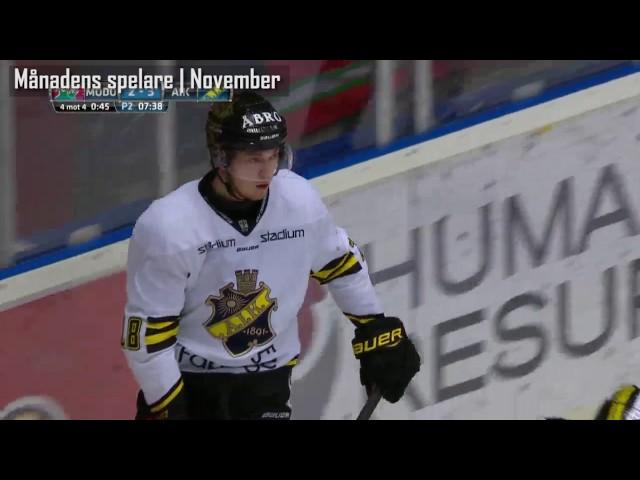 Spelare I Hockeylag