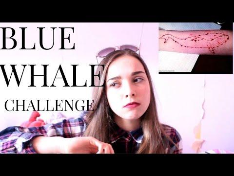 BLUE WHALE CHALLENGE 🐳 thumbnail