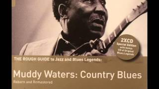 "Muddy Waters "" Louisiana Blues"""