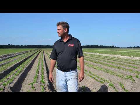 Jones Potato Farm Wins American Vegetable Grower Magazine's 2017 Grower Achievement Award