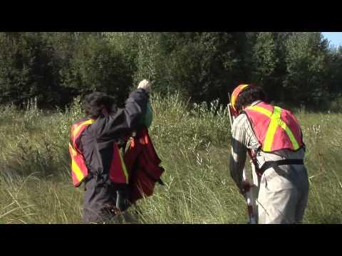 Assessment Methods for Oil Sands Reclamation Marshes