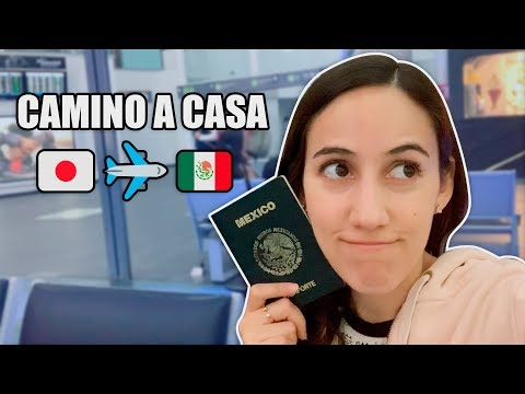 the-long-way-from-japan-to-mexico-✈️-mexican-going-home-|-hellotaniachan