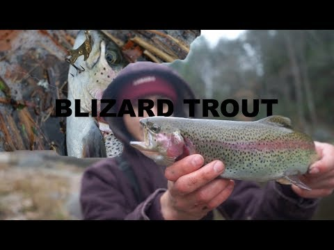 Fishing In The Snow For BIG Trout On The Deerfield River
