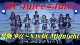 4K Juice=Juice  禁断少女 〜 Vivid Midnight  '18夏  歌詞付