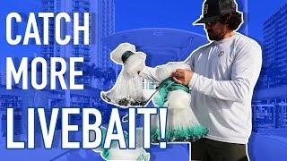How To Choose the RIGHT Cast Net for Live Bait Fishing