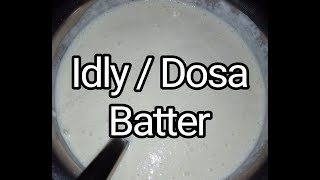 Idly, Dosa And Kuzhi Paniyaram Batter    How to Make Idly, Dosa Batter in Tamil For Beginners