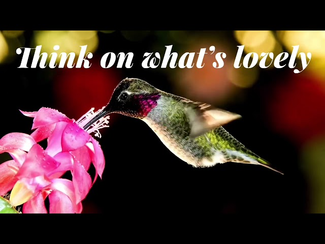 Think About  What's Lovely