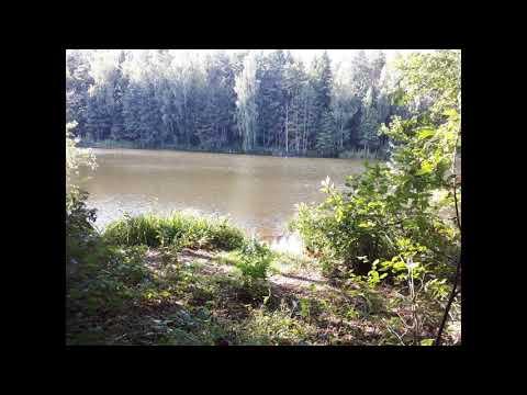 Земля на берегу Десногорского водохранилища в Смоленской области