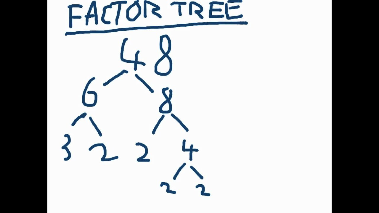 worksheet Factor Tree factor trees for dummies youtube dummies