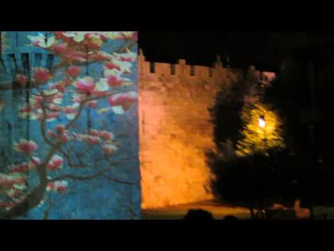 Damascus Gate - Jerusalem Festival of Light 2013 - Tree of Life