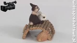 figurka z zwierzętami Figurki ZWIERZĘTA - realizacja filmów do internetu i filmów produktowych