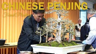 Chinese Penjing Demonstration with Interview