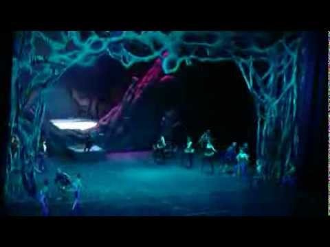 "Acrobatic ""SWAN LAKE"" show (CHINA) FullHDV"