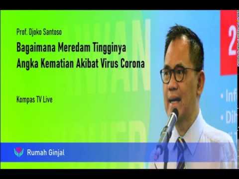 Prof. Djoko Santoso - Bagaimana meredam tingginya angka kematian akibat virus corona -  Kompas TV