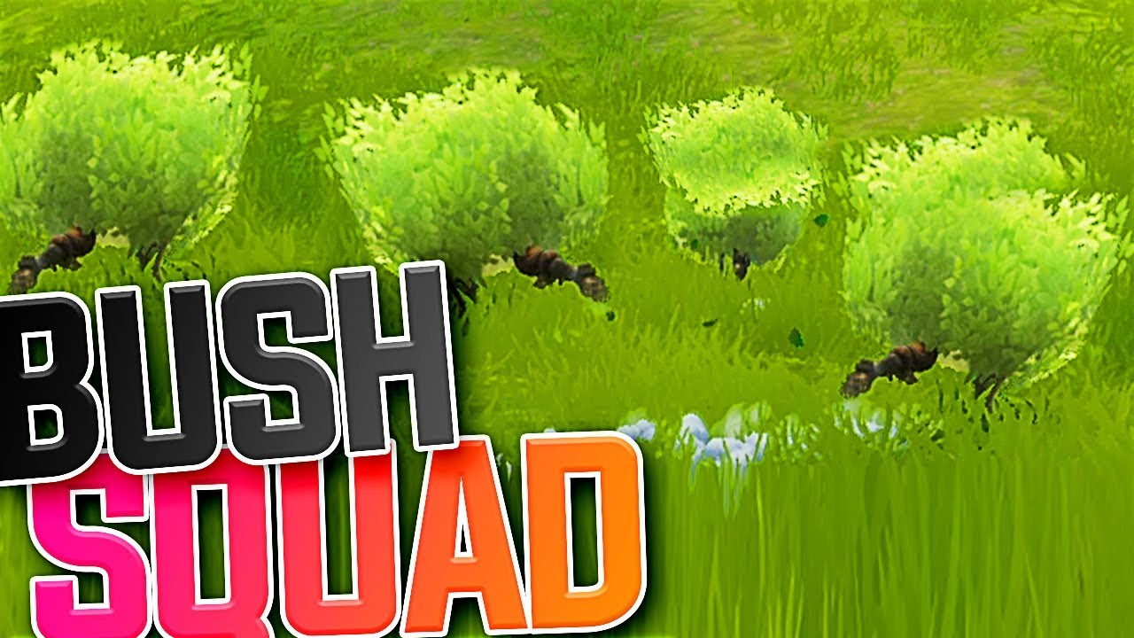 Bush Squad Fortnite Battle Royale Youtube