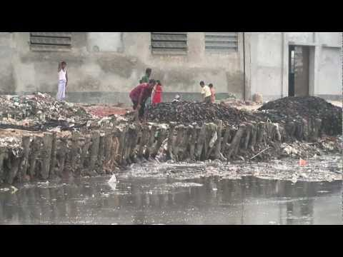 Textiles: Environmental Impacts (Preview)