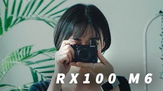 다들 이 카메라 하도 좋다길래 써봤는데... 진짜 솔직한 RX100 M6 사용기