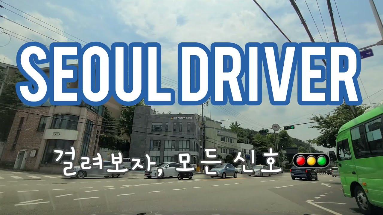 [운전해봐랑] SEOUL DRIVER 걸려보자, 모든 신호 🚥