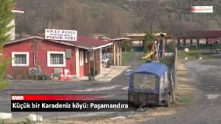 Küçük Bir Karadeniz Köyü: Paşamandıra