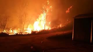 Volunteers Battle Portuguese Wildfire