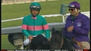 Zenyatta  - her dance moves + extended pre-race Breeders Cup 2009 footage