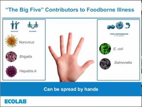 Food Safety Matters Webinar, August 2017 - Hand Care
