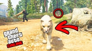 JE ME TRANSFORME EN ANIMAL DANGEREUX ! - GTA 5 ONLINE