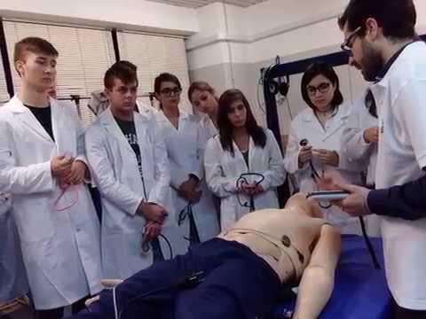 4 c i di simulazione in medicina e approccio al for Simulazione medicina