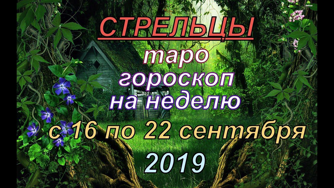 ГОРОСКОП СТРЕЛЬЦЫ с 16 по 22 СЕНТЯБРЯ.2019