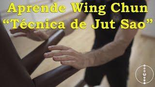 """Aprende WING CHUN en ESPAÑOL """"Técnica de Jut Sao""""  8º🐉🐅🐉"""