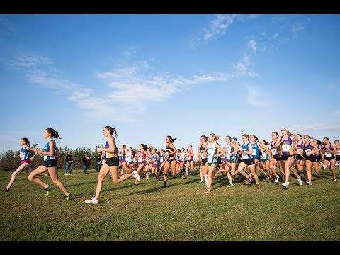 American Athletic Conference Cross Country Championships