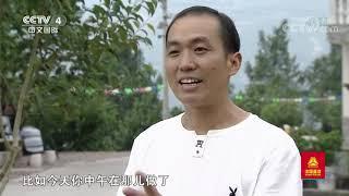 [远方的家]行走青山绿水间 山野垂硕果| CCTV中文国际 - YouTube