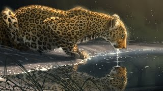 """Speed Paint - Photoshop """"Just A Sip"""" Leopard"""