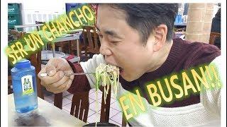 BUSAN TOUR #2: COMER PULPO VIVO Y MUCHO MAS EN BUSAN!! - 부산에서의 먹방
