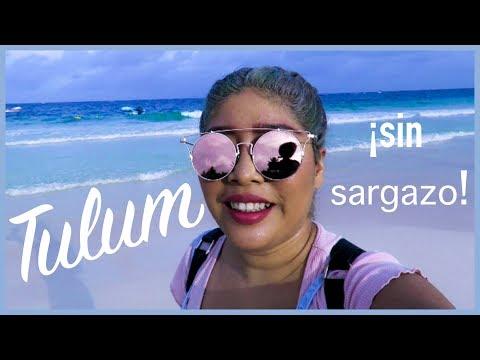 TULUM LIMPIO de ¡SARGAZO! OCTUBRE 10/10/2018 / #elainecotbar / Riviera Maya