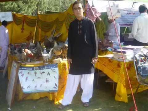 hazara university funfair pictures 2011