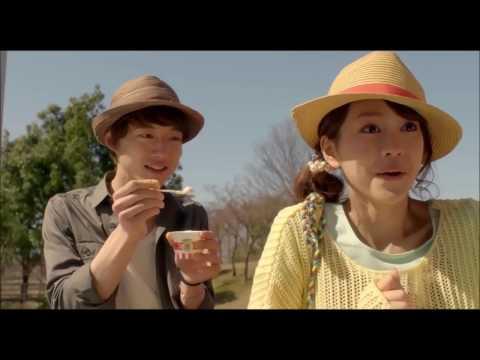 Kana Nishino - Torisetsu トリセツ