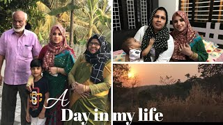 A day in my life/Easy wearing Saree design/Viewer's happy moments -Taste Tours by Shabna hasker thumbnail