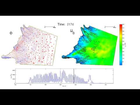 Modelling subglacial drainage coupled to ice flow in Greenland