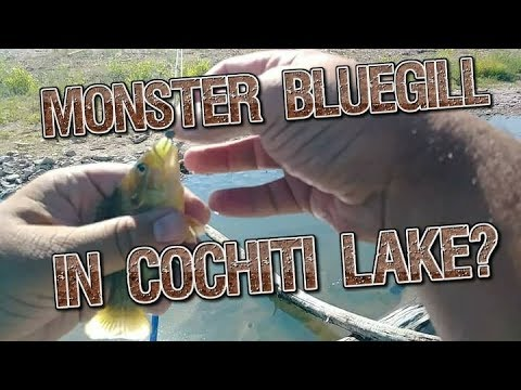 Cochiti Lake, NM - Bank Fishing