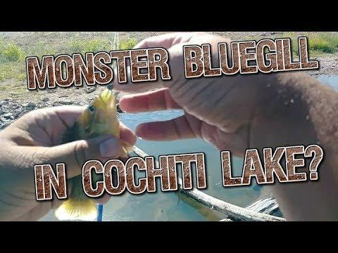 Cochiti Lake, NM - Bank Fishing