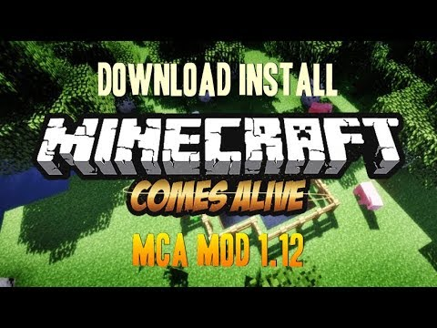 MINECRAFT COMES ALIVE MOD 1.12 minecraft - how to download and install MCA 1.12 (with forge)