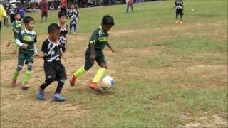 PIALA BLACK EAGLE U8 2017 - LJFC B VS BLACK EAGLE