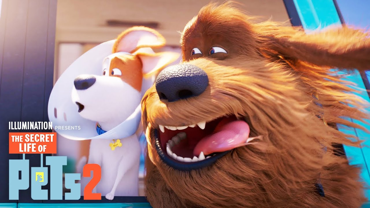 Download The Secret Life of Pets 2 | Max and Duke Go on a Road Trip!