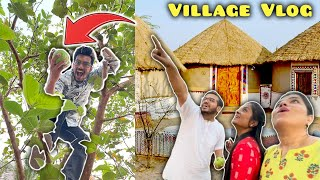 Sanket Ped Se Gira ? Exclusive Village Vlog Hungry Birds