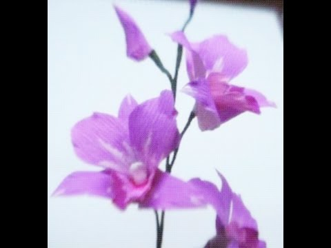 How to make Paper Flowers Orchids (Flower # 34)