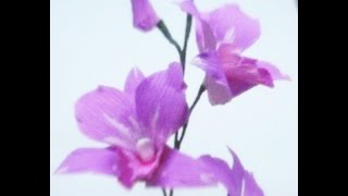 DIY Paper Flowers - Orchids