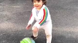 OH WREN: Little Baller