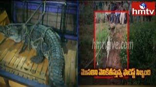 Crocodile Hulchul In wanaparthy district   hmtv Telugu News