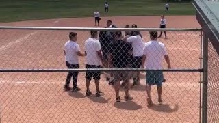 Parents say problems started early at baseball game that ended in brawl